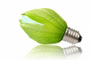 Green-leaf lightbulb